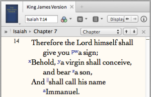 """""""A virgin shall conceive and bear a son... Immanuel"""" (Is 7:14)."""
